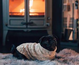christmas, fireplace, and pugg image