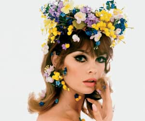flowers, beauty, and jean shrimpton image
