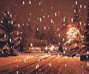 snow, winter, and christmas image