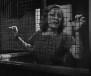 caged, gif, and vintage image