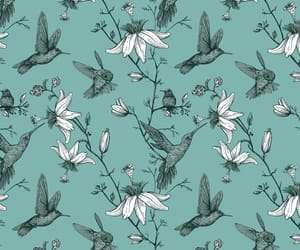 bird, green, and pattern image