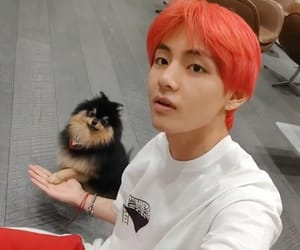 bts, taehyung, and yeontan image