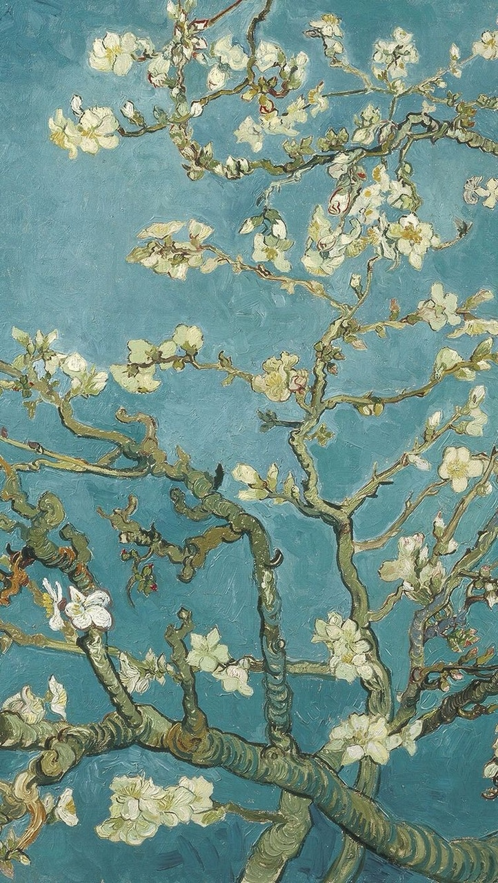 45 Images About Vincent Van Gogh On We Heart It See More About