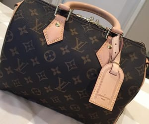 bag, fashionista, and luxury bags image