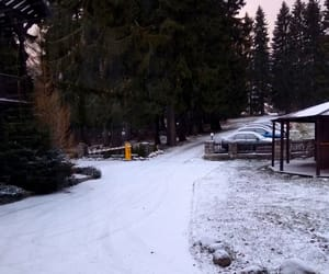 cars, nature, and snow image