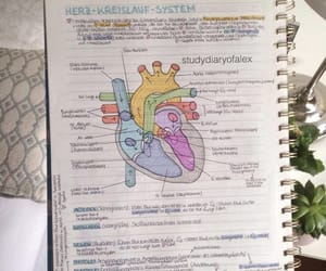 heart, notes, and school image