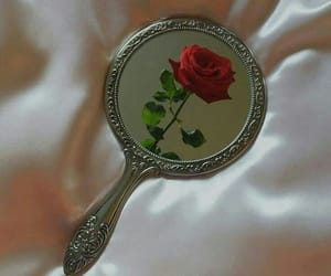 rose, mirror, and red image