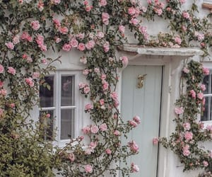flowers, house, and inspiration image