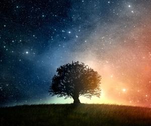 stars, tree, and sky image