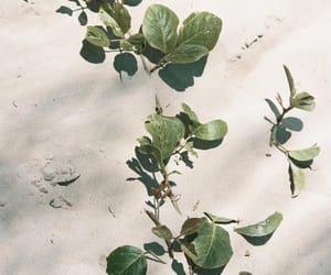 explore, minimalism, and nature image