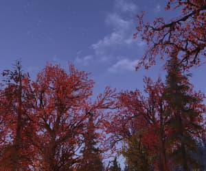 autumn, night sky, and evening image