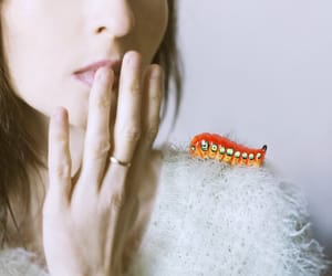 caterpillar, etsy, and creepy image