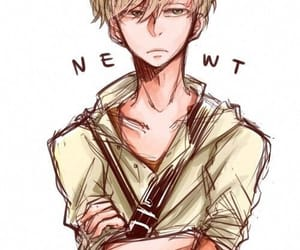 anime, draw, and newt image