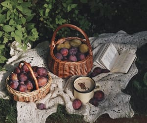 decoration, food, and FRUiTS image