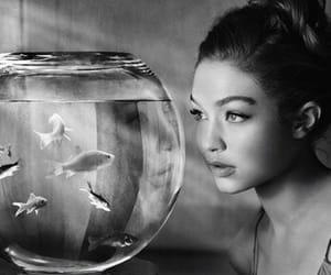 gigi hadid, model, and fish image