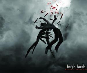 hush hush, book, and patch image