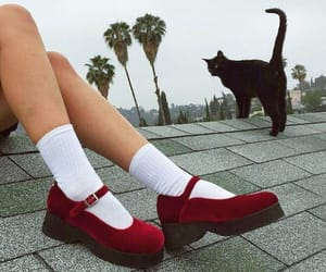 creepers, style, and sweet image