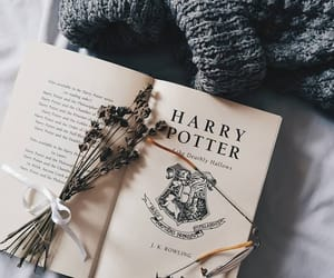 book, harry potter, and sweater image