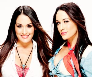 wwe, bella twins, and nikki bella image