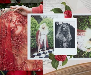 alice in wonderland, wildfox, and fairytale image