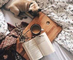 book, flower, and dog image