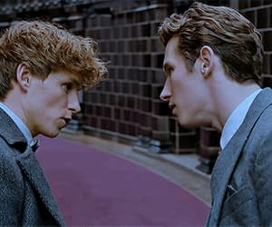 brothers, theseus scamander, and gif image