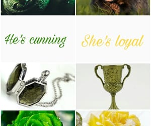 slytherin and huffelpuff image