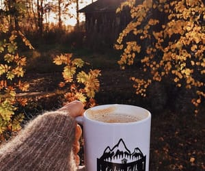 autumn, soft, and style image