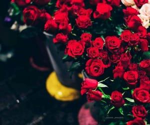 cute flowers, ﺭﻣﺰﻳﺎﺕ, and kingdom love kiss image