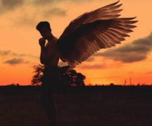 angel, Angel Wings, and handsome image