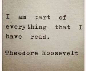 book, reading, and theodore roosevelt image