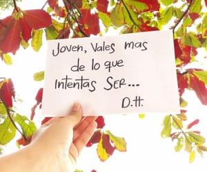 belleza, frases, and frases en español image