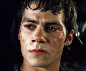 actor, gif, and maze runner image