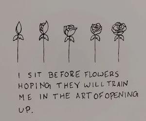flowers, drawing, and quotes image