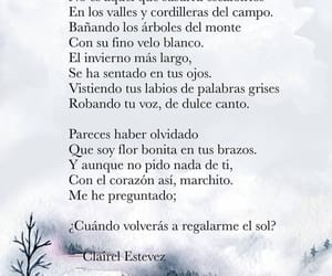 poesia, frases, and poemas image