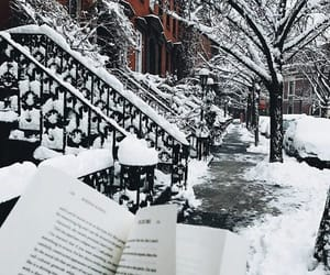 books, reading, and winter image