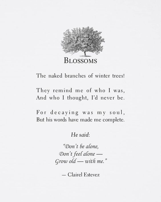 clairelestevez on instagram ┄⊱♡⊰ blossoms ⊱♡⊰┄ love poem