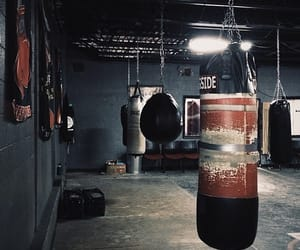 athlete, boxing, and gym image