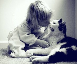 cat, baby, and kiss image
