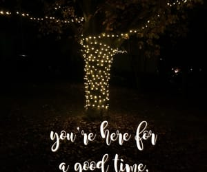 beautiful, fairy lights, and magical image