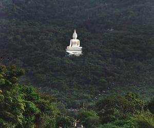 Buddha, nature, and green image