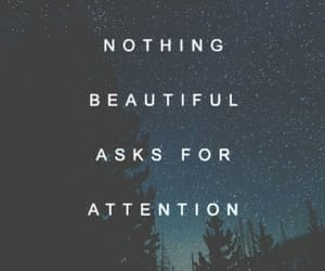 quotes, beautiful, and stars image