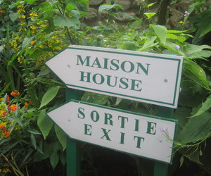 exit, flowers, and house image