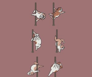 doggy pole dance image