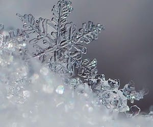 winter, snow, and wallpaper image