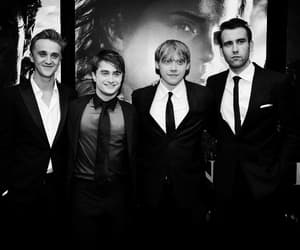 harry potter, rupert grint, and tom felton image