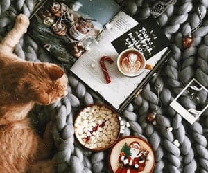 cat, christmas, and coffee image