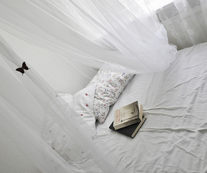 butterfly, book, and white image
