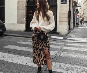 animal print, beauty, and clothes image