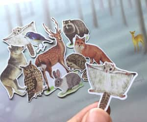 ferret, animal sticker, and safari animal image